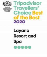 Tripadvisor Certificate 2020 Best of the best_page-0001 (1)